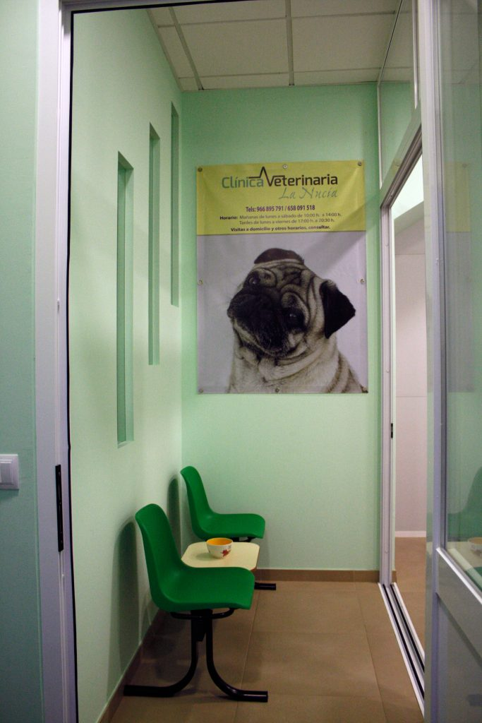 clinica para perros la nucia
